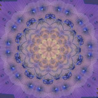 FLOWERMMMM111222223333.jpg