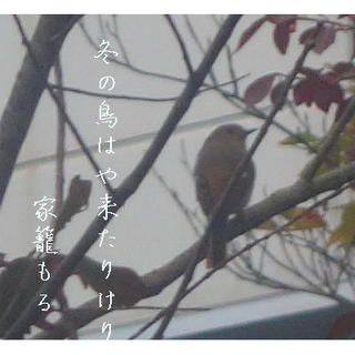 FUYUTORIIII11.jpg