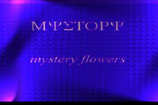 MYSTERY FFF1222.jpg