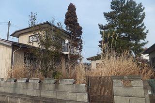 akiya223.jpg