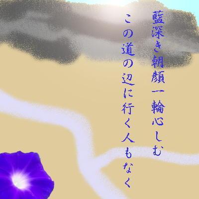 asagao11111.jpg
