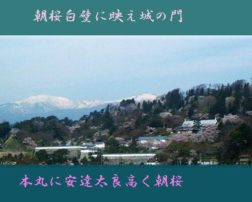 asazakurani123.jpg