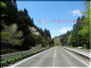 aszakura121212.jpg