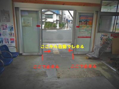 autodoor1.jpg