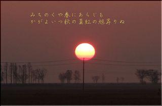 autumnsun11.jpg
