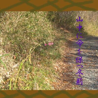 azamitochii111.jpg
