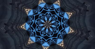 blueflower3333.jpg