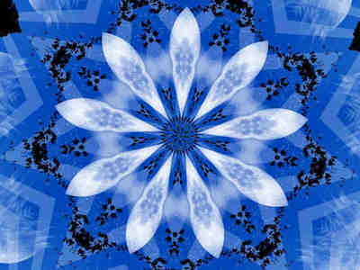 blueflowerrrr4.jpg