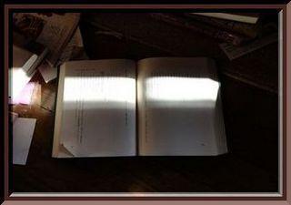 bookwwwww111.jpg