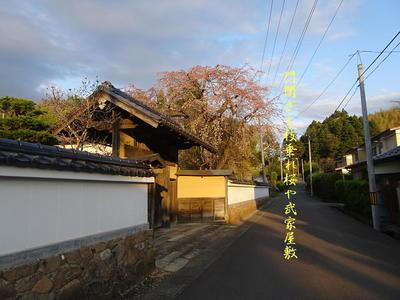 bukeyashikik1.jpg