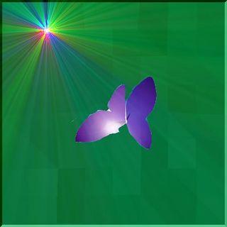 butterflyssssss11111.jpg