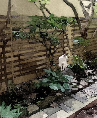 cattuyu1122_FotoSketcher.jpg