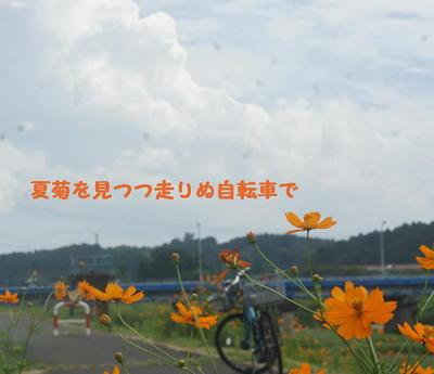 cloudsummercc33.jpg