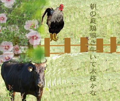 cowflower1.jpg