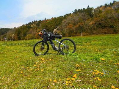 cyclexc.jpg