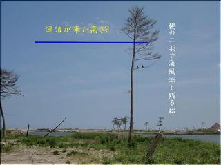 daimatuumoji2222.jpg