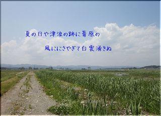 daiyoshi2222.jpg