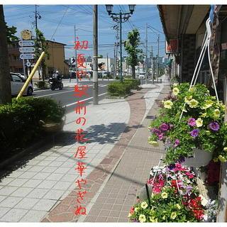 ekimaehanaya111.jpg