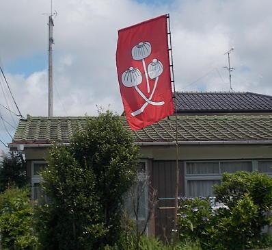flagkinoko111.jpg