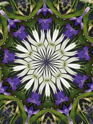flowerarengemmm4.jpg