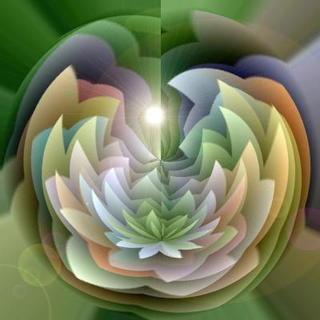 flowerform111111.jpg