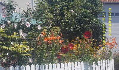 flowerhouseee111.jpg