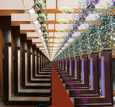 flowerway1.jpg