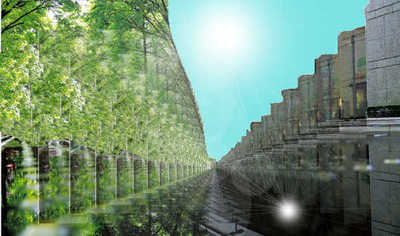 forestbuidinggg1.jpg