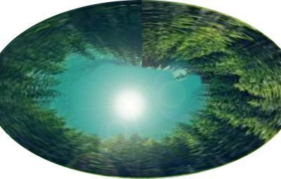 forestcircle1.jpg