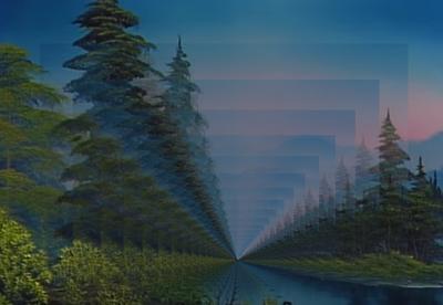 forestevening1232144556666.jpg
