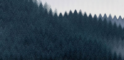 forestgreeeeen.jpg