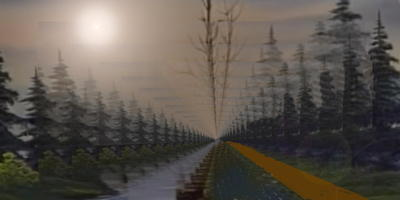 forestnorth4.jpg
