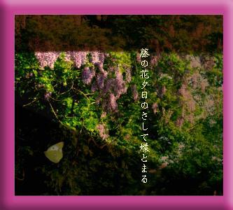 fujichou1.JPG