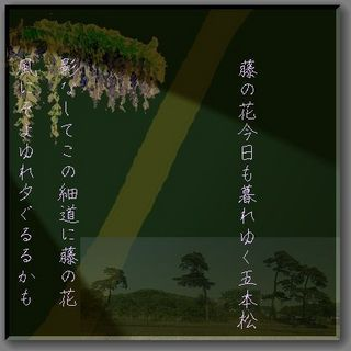 fujiiiiii123-thumbnail2[1].jpg