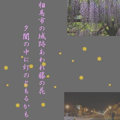 fujinohanasoma11.jpg