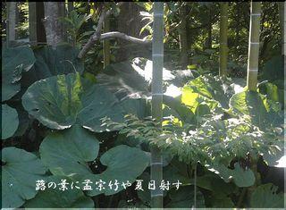 fukitake111.jpg