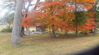 fuyumomijiiii3333.jpg