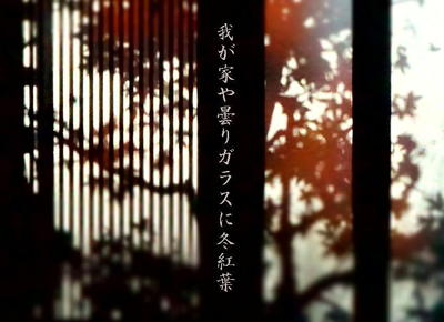 fuyumomijiwin1.jpg