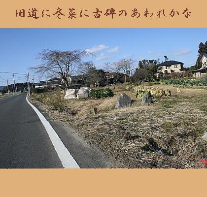 fuyunakohi1.jpg