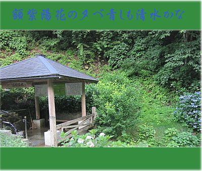 gakuajishimizu11.jpg