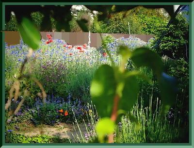 gardenresff1_FotoSketcher22.jpg