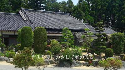 gardenstoneee123_FotoSketcher.jpg