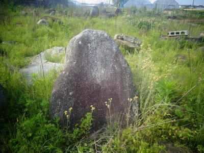 genroku432121.jpg