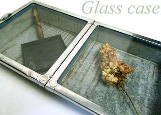 glassscase111.jpg