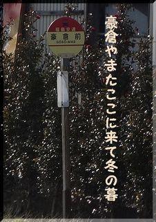 goukura123.jpg