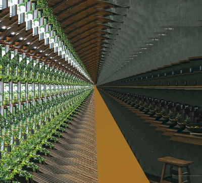 greenbarrr4.jpg