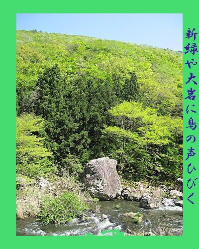 greenrock111.jpg