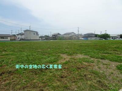 greenscen1.jpg