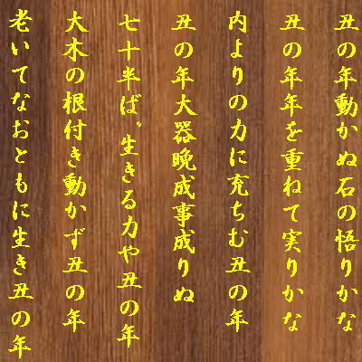 haikubull1.jpg