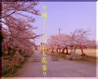 hanazakariii111.jpg